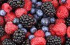Весенняя ягодная диета